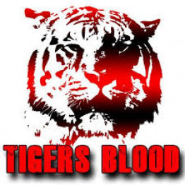Tigers  Blood (bestseller)