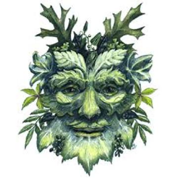 Herbe des druides (solub arome)