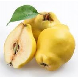 Quince (TPA) Flavor Concentrate -айва